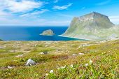 picture of fjord  - Scenic fjord on Lofoten islands with typical fishing hut and towering mountain peaks - JPG