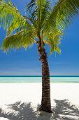 stock photo of boracay  - Island Boracay Philippines - JPG