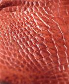 pic of alligator  - Alligator patterned background - JPG