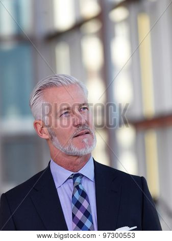 portrait of senior business man with grey beard and hair alone i modern office indoors