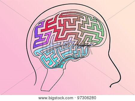 Maze As Brain