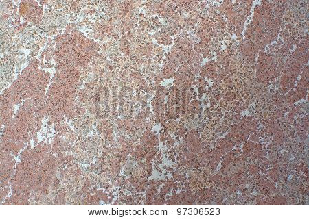 Red Breccia Or Rough Cast Wall
