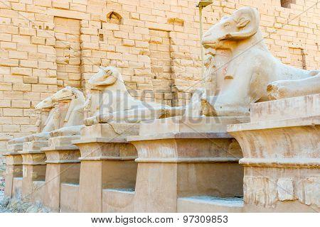 Karnak Temple, Luxor, Egypt