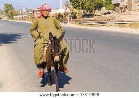 Man And The Donkey