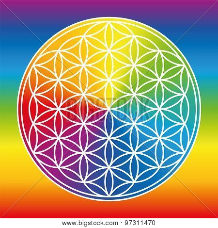 Flower Of Life Rainbow Gradient Color Wheel