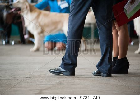 Judges At A Dog Show