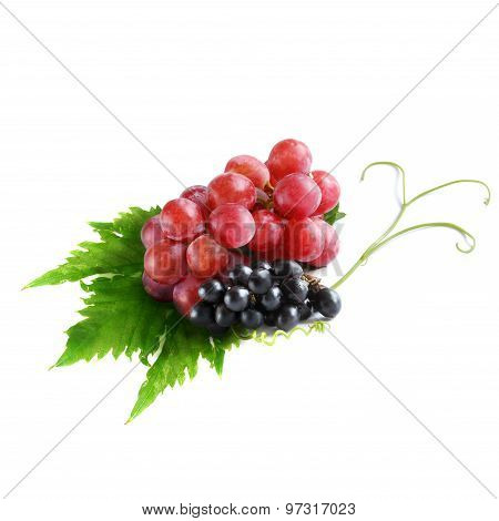 Black Grapes And Red Grapes Isolated On White Background (fruit)