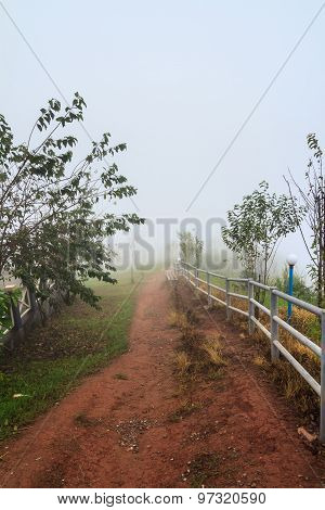 Pathway In The Mist