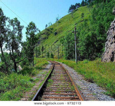 Railroad Track, Summer.