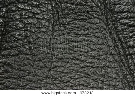 Black Leather Texture Details