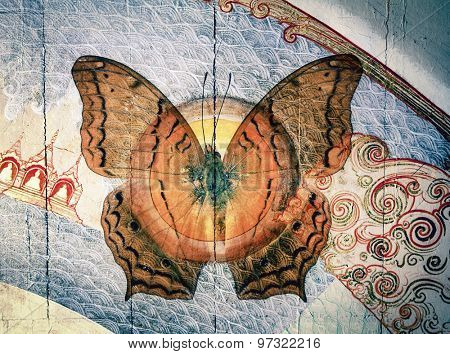 grunge butterfly image
