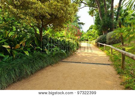 Botanical Garden On Mediterranean Coast Of Spain, Blanes