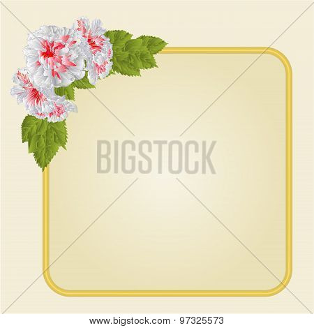 Golden Frame With Whites Hibiscus Vector