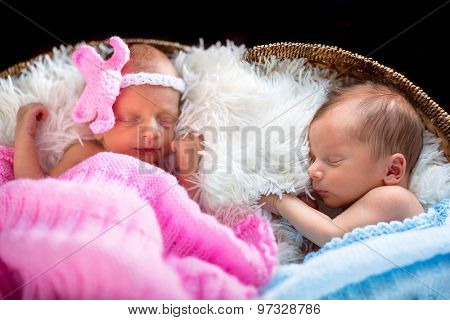 Newborn twins sleeping inside the wicker basket
