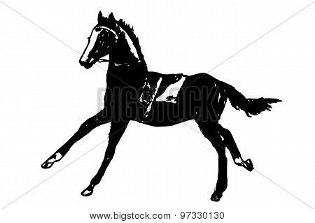 Racehorse(child's Drawing)