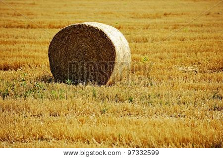 One Hay Bale