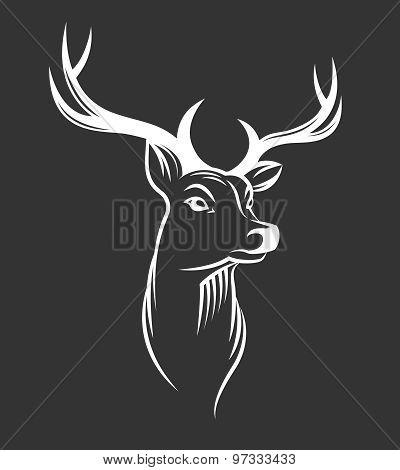 Deer Head On Black Background