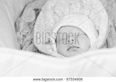 Newborn Baby Sleeping In A Stroller