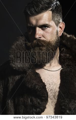 Sexual Man In Fur Coat