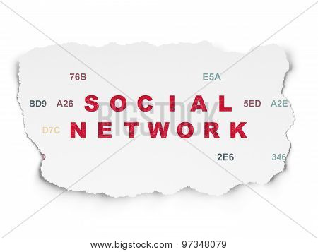Social media concept: Social Network on Torn Paper background