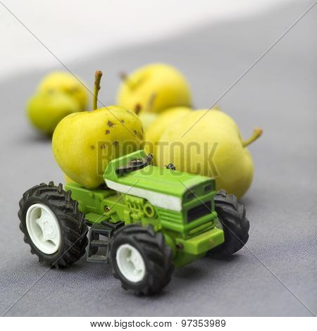 Tractor And Apples
