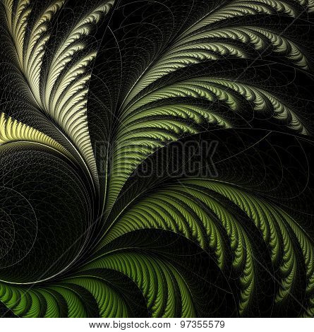 leaf of fern, fractal