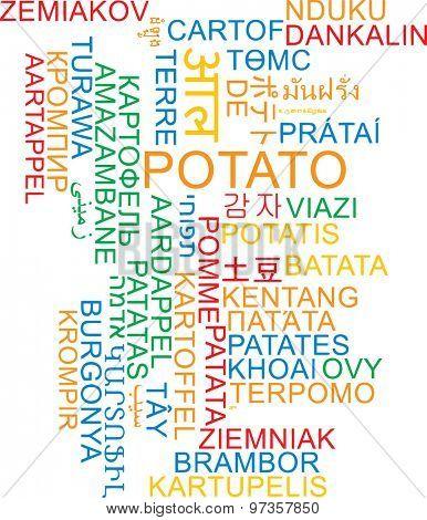 Background concept wordcloud multilanguage international many language illustration of potato
