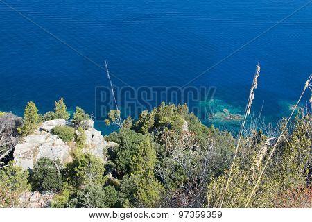 Coastal Green Vegetation And Turquoise Mediterranean Water