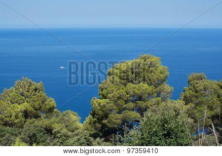 Majorca Coast Horizon View