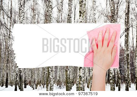 Hand Deletes Bare Trees In Winter Forest By Rag