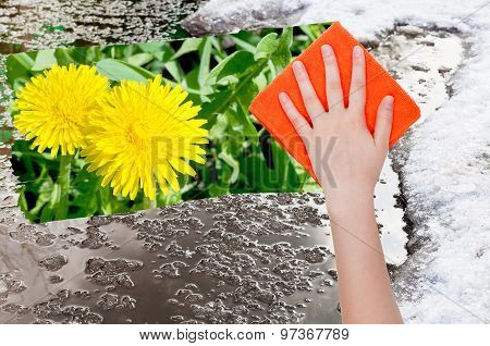 Hand Deletes Melting Snow By Orange Cloth