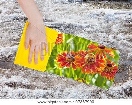Hand Deletes Melting Snow By Yellow Cloth