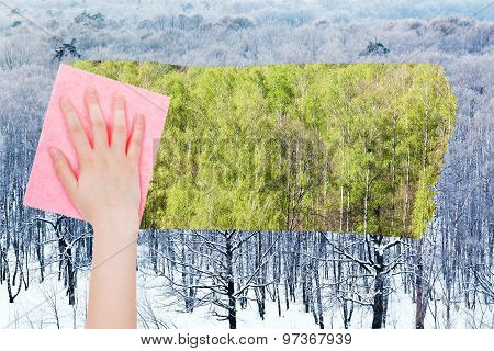 Hand Deletes Winter Woods By Pink Cloth