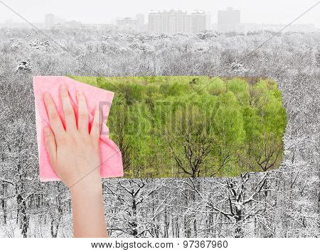 Hand Deletes Winter Forest By Pink Cloth