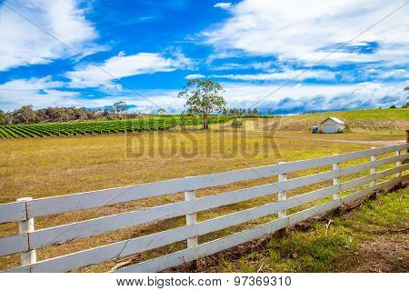Australian country farm