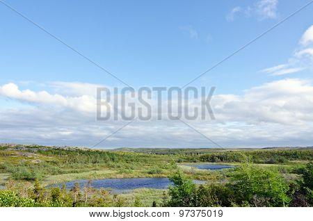 Newfoundland Landscaoe