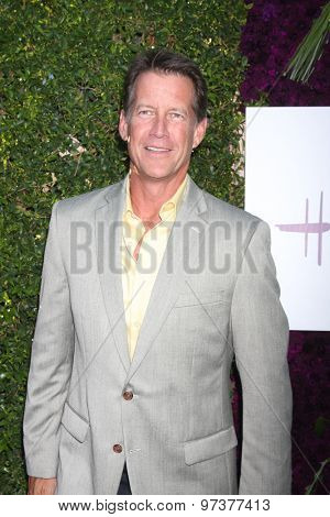 LOS ANGELES - JUL 29:  James Denton at the Hallmark 2015 TCA Summer Press Tour Party at the Private Residence on July 29, 2015 in Beverly Hills, CA