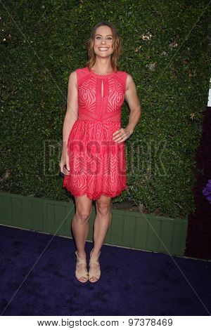 LOS ANGELES - JUL 29:  Ashley Williams at the Hallmark 2015 TCA Summer Press Tour Party at the Private Residence on July 29, 2015 in Beverly Hills, CA