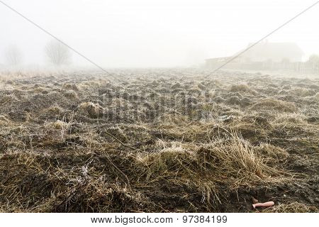 Plowed Land In The Fog