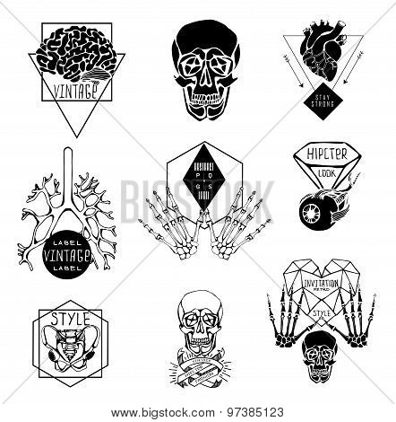 Set of Labels with hand draw human anatomy