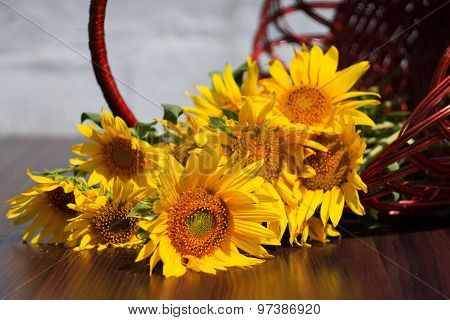 Flowers Sunflowers In A Basket On A Blurred Background