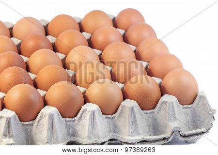 Hen eggs in paper tray on white background