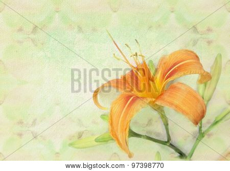 Tender Orange Lily Flower. Holiday Card Template.