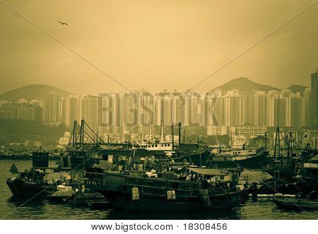 Hong Kong Typhoon Shelter
