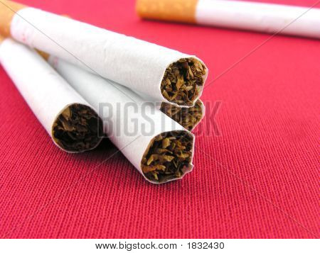 Cigarettes The Filter.