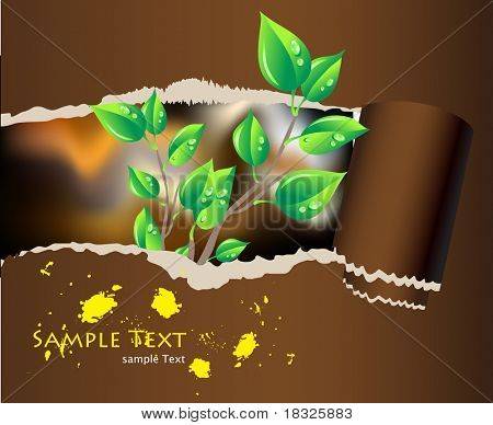 fragmentary paper with green branch and place for text