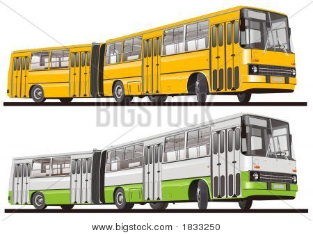 City Bus Articulated, Isolated
