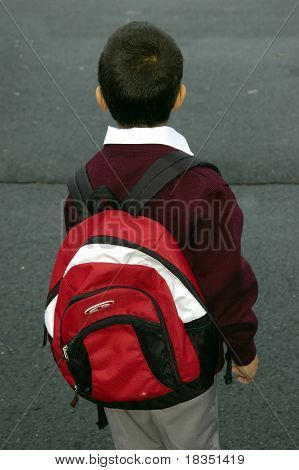 A Kindergarden kid going to school with his backpack