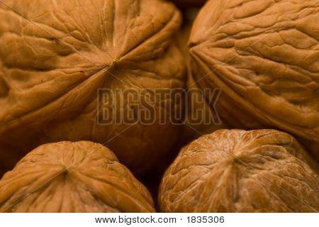 Walnuts Iii