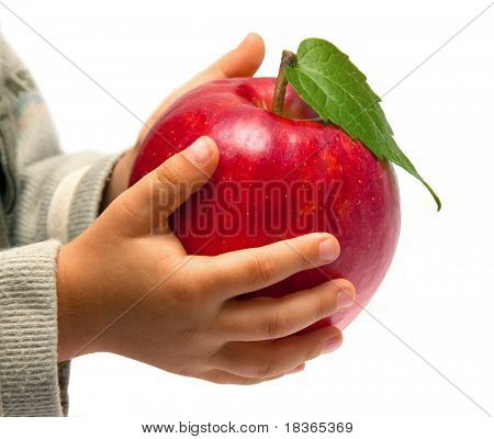 Red apple in the children's hands. Isolated on white background.